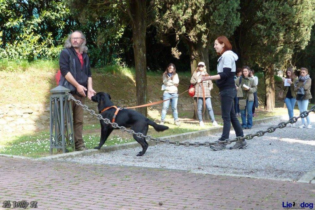 Grignano di Brembate (BG) 11 giugno 2017 - La Urban Mobility Dog insieme ai cani del canile con Ivano Vitalini