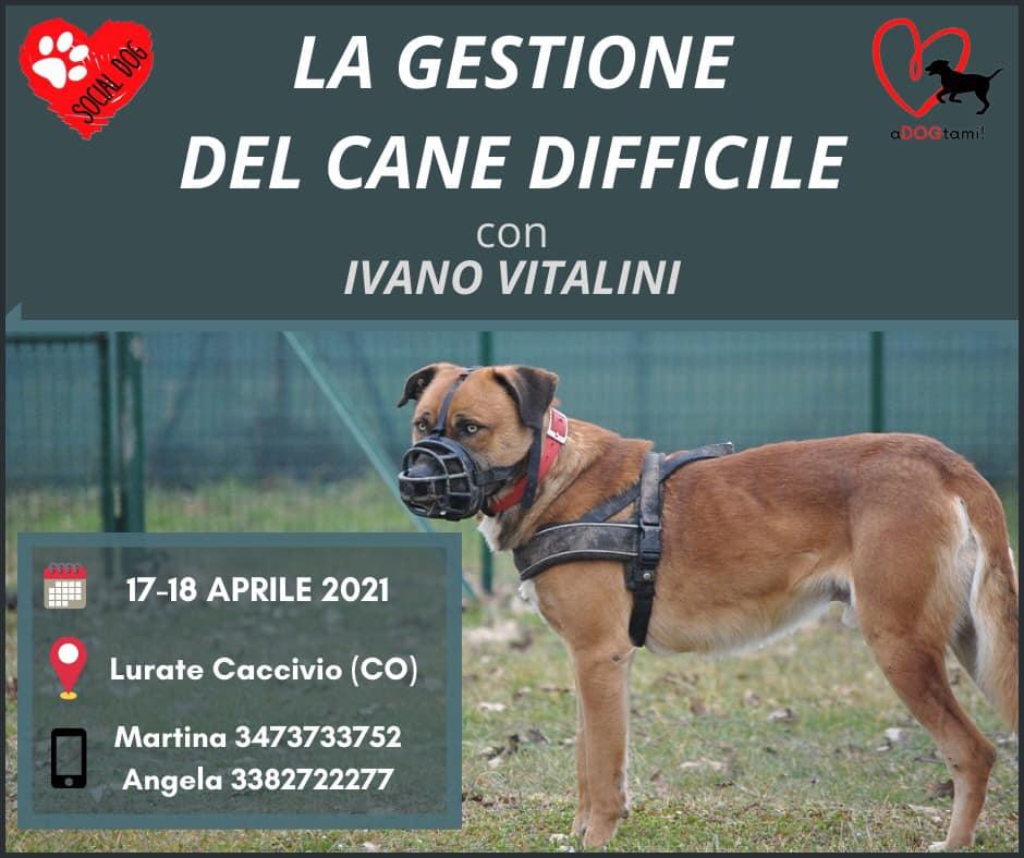 COMO 17-18 Aprile 2021 - La gestione del cane difficile con Ivano Vitalini