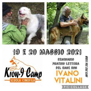 19-20 Maggio 2021 - Seminario di lettura del cane con Ivano Vitalini