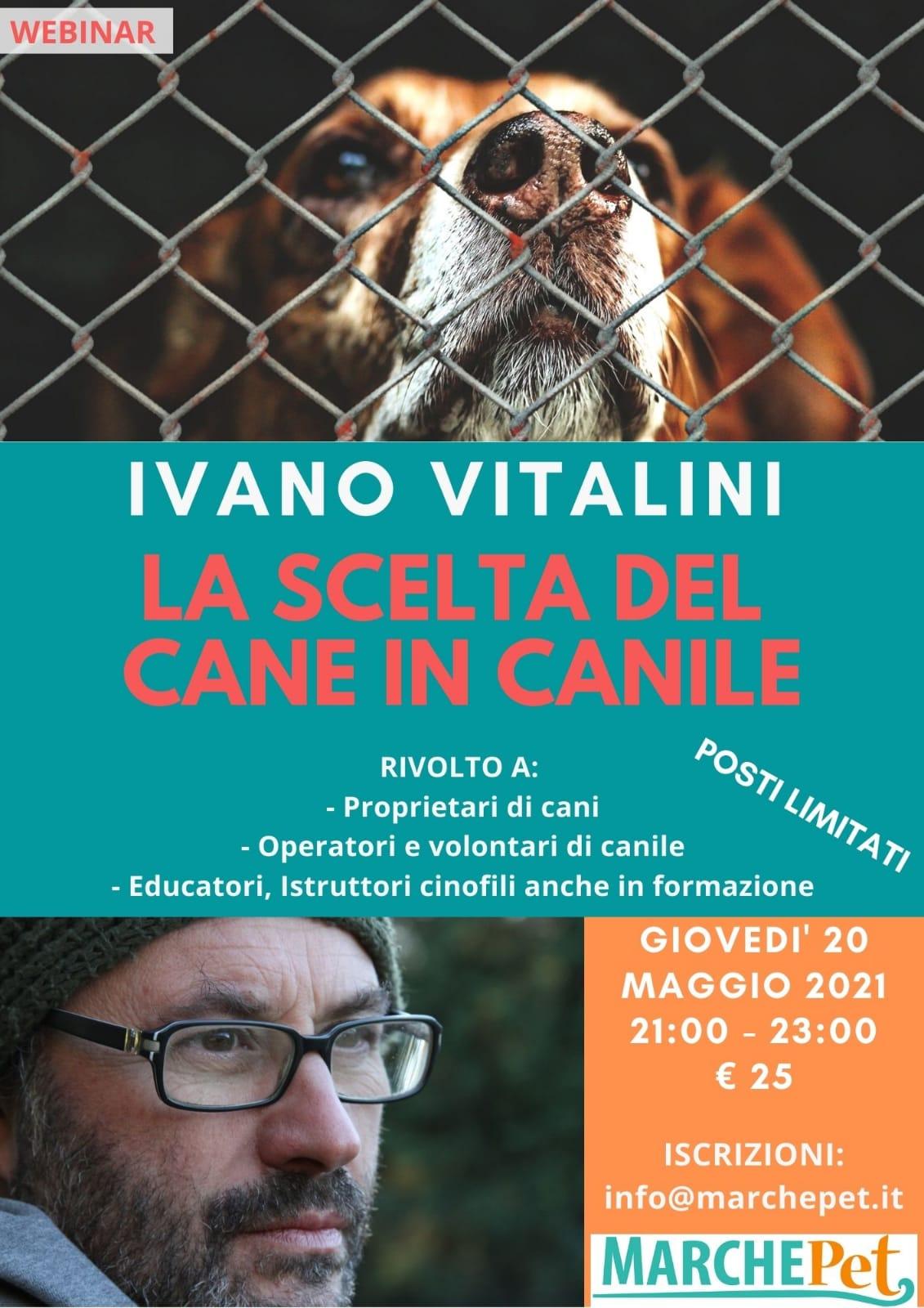 Webinar 20 maggio 2021 - La scelta del cane in canile con Ivano Vitalini