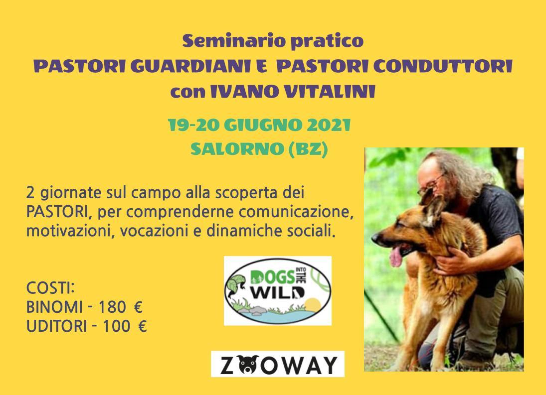 SALORNO (Bolzano) 19-29 Giugno 2021 - Pastori guardiani e pastori conduttori con Ivano Vitalini