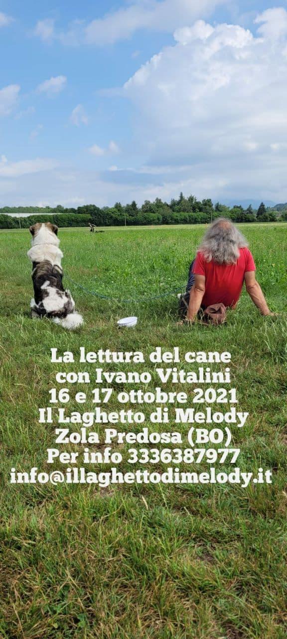 BOLOGNA 16 e 17 ottobre 2021 - La lettura del cane con Ivano Vitalini