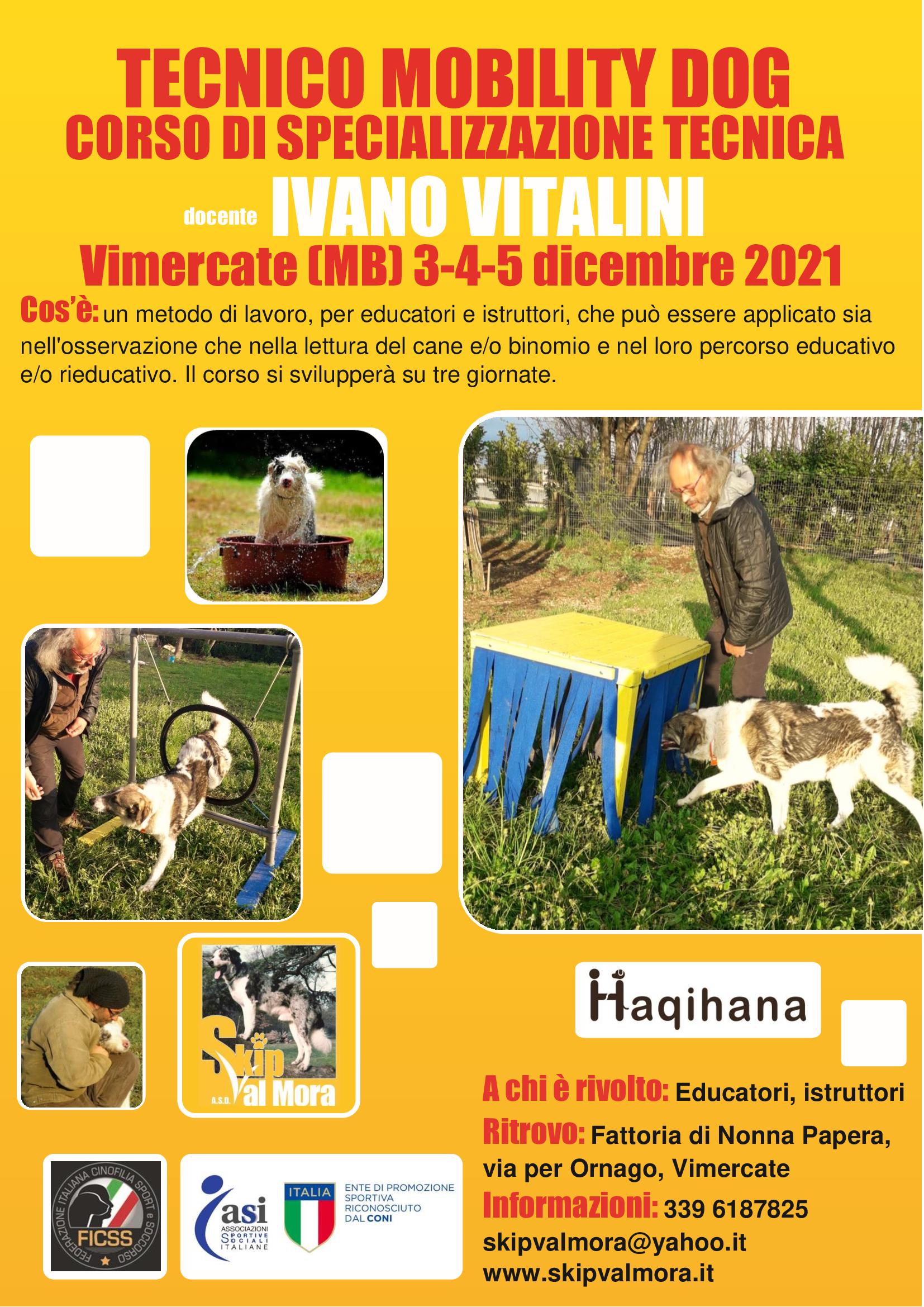 Vimercate (MB) 3-4-5 Dicembre 2021 - Tecnico Mobility Dog con Ivano Vitalini