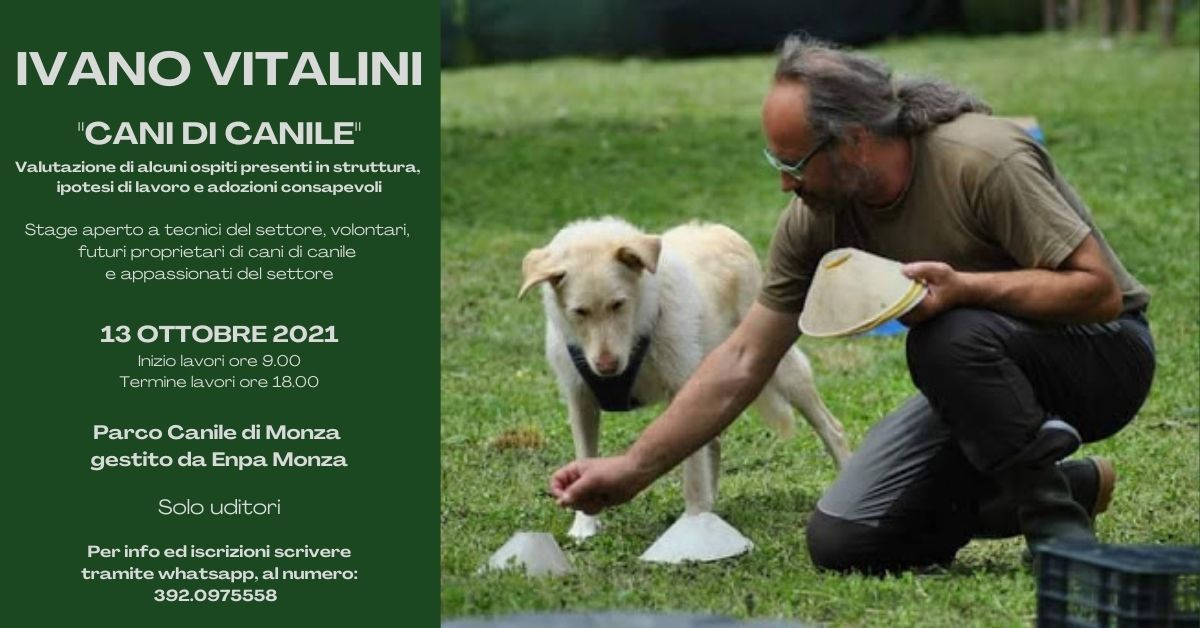 13 Ottobre 2021 - Cani di canile con Ivano Vitalini